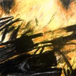 01-Dana-Velan-Fire