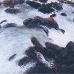 03-Dana-Velan-Water